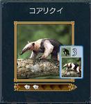 カード�@.JPG
