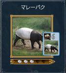 カード�C.JPG
