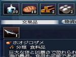 サメ・・2.JPG